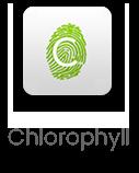 chlorophyll app icon