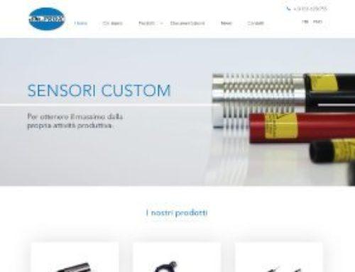 SM Prox – Sviluppo Web