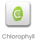 Chlorophyll App